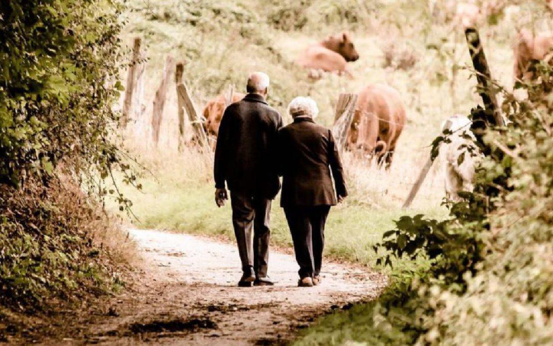 Hábitos saludables para el adulto mayor en confinamiento
